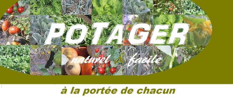 potager naturel facile