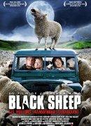 Black Sheep (Les moutons transg�niques d�barquent)