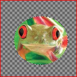 http://i28.servimg.com/u/f28/11/64/56/15/g210.jpg