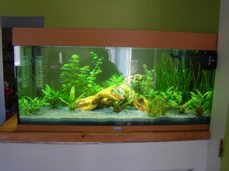 aquarium juwel rio. Black Bedroom Furniture Sets. Home Design Ideas