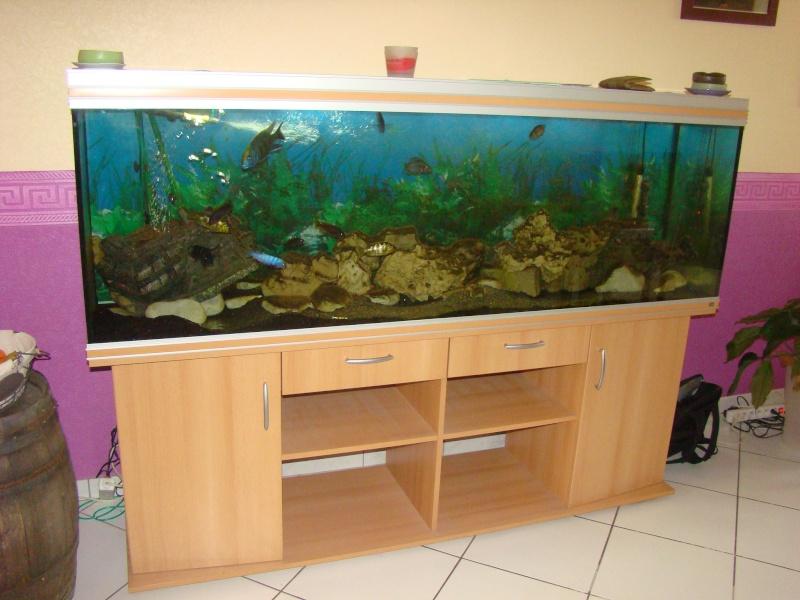 achat aquarium 800 l. Black Bedroom Furniture Sets. Home Design Ideas