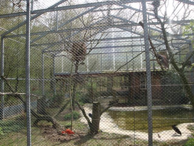 Visites du parc merveilleux luxembourg for Voliere perroquet exterieur