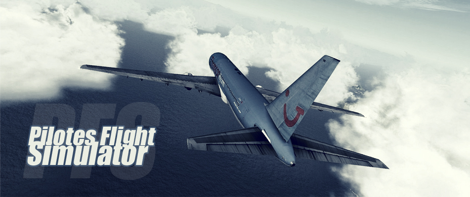 Pilotes Flight Simulator