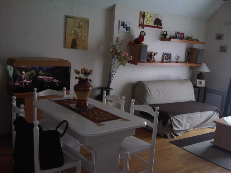 awesome deco salon 20m2 with deco salon 20m2 cuisine ouverte sur salon salle manger cuisine en image amenager - Amenager Salon Salle A Manger 20m2