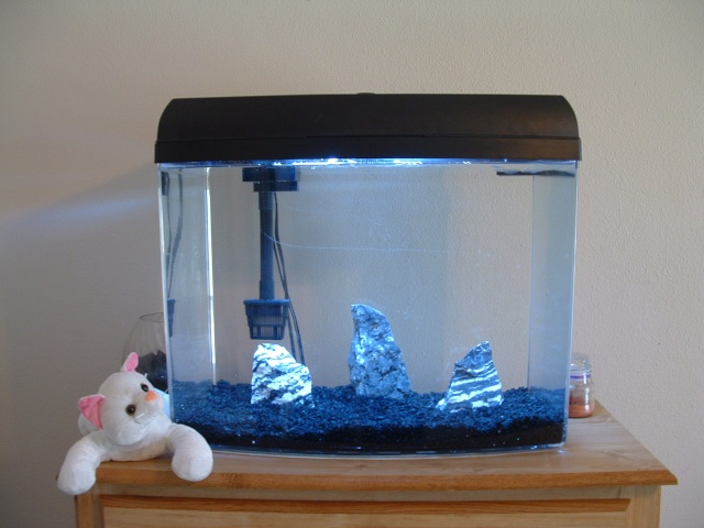Marineland eclipse and other complete set ups for Eclipse fish tank