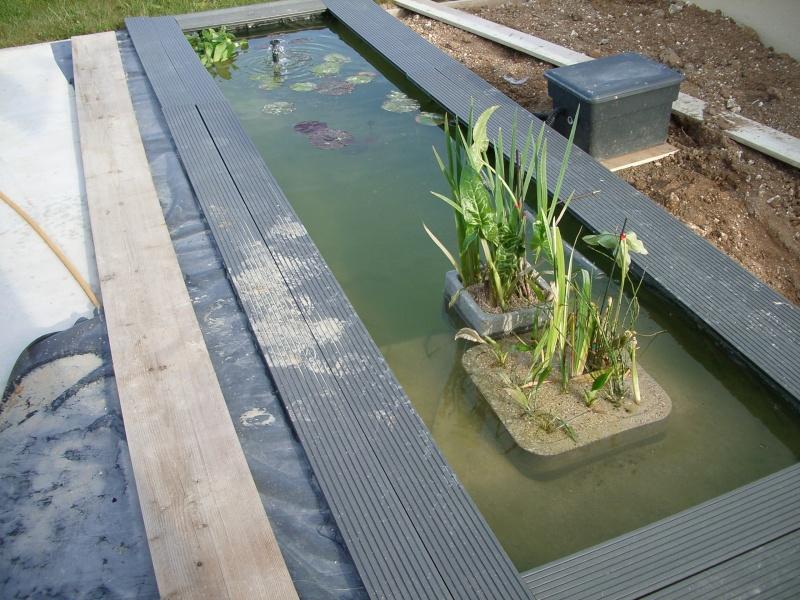 R alisation d 39 un bassin ext rieur for Bassin d eau exterieur