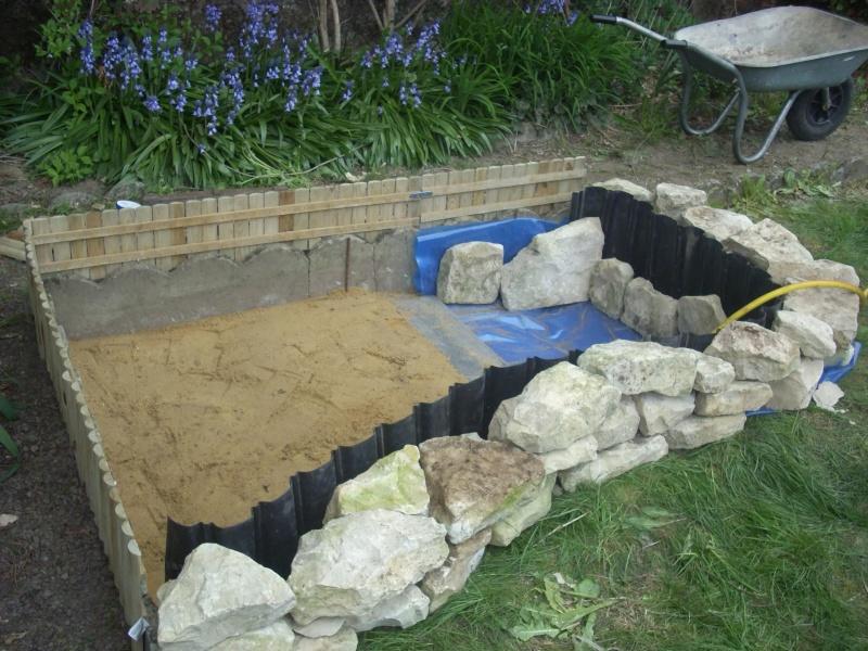 Enclos bassin pour les pelomedusa subruta - Bassin pour tortue aquatique villeurbanne ...