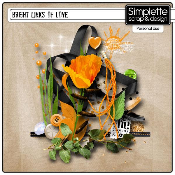bright links of love kit simplette